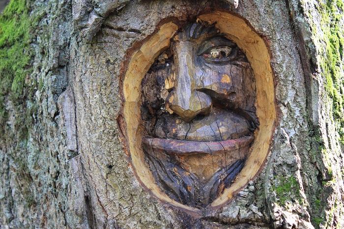 Figuren Binger Wald