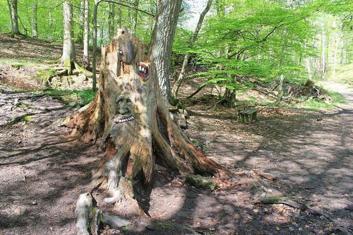Feste Binger Wald