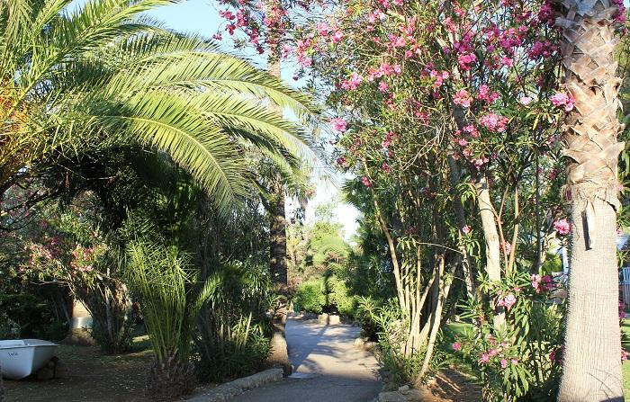 Gute Hotels auf Mallorca
