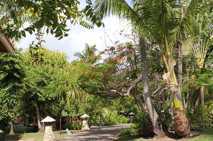 Hotelbewertung Blauhotel Natura Park domrep