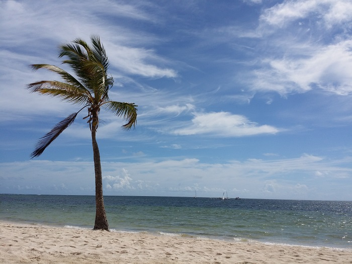 Dominikanische Republik - Punta Cana - Natura Park