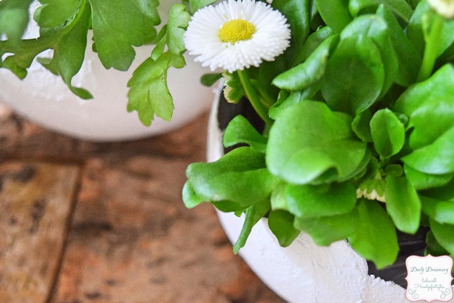 Dekoration aus Gips - selbstgemachte Vase für Blumen