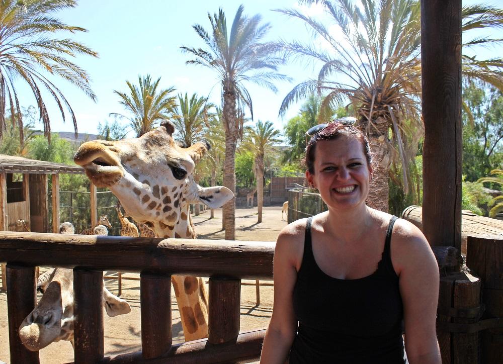 Wo befindet sich der Oasis Park auf Fuerteventura