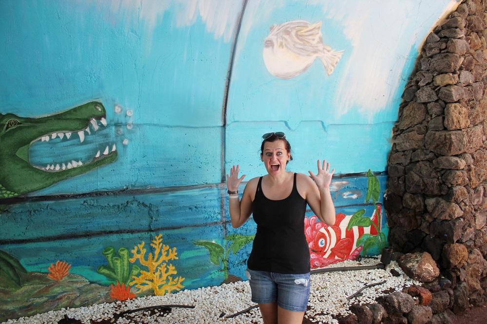 Oasis Park Fuerteventura Preise