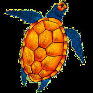 Stockbild Schildkröte
