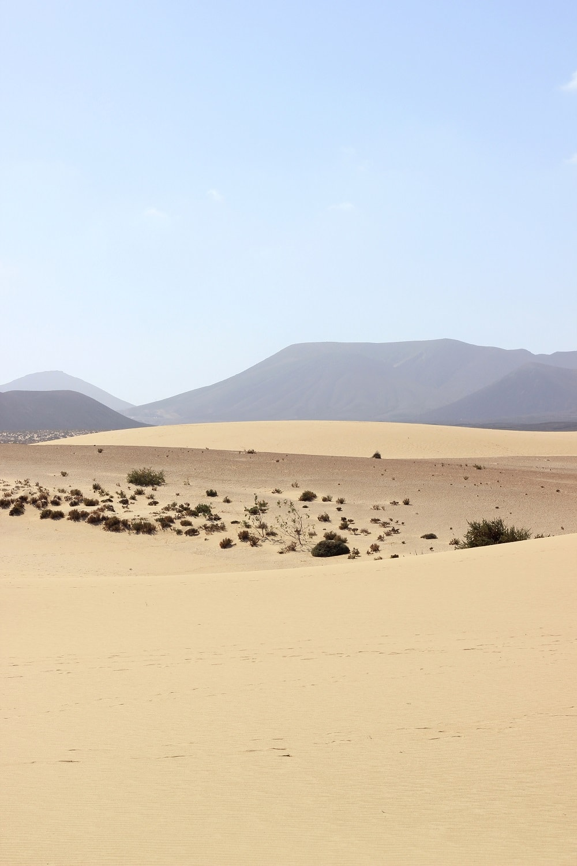Corralejo Sanddünen Fuerteventura